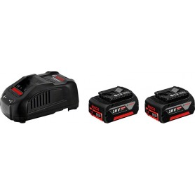 Batteries 2 pcs-5ah + chargeur - gal 1880 hp 18v nue
